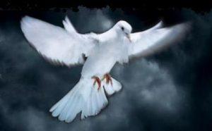 Bild A Mass for Peace 7
